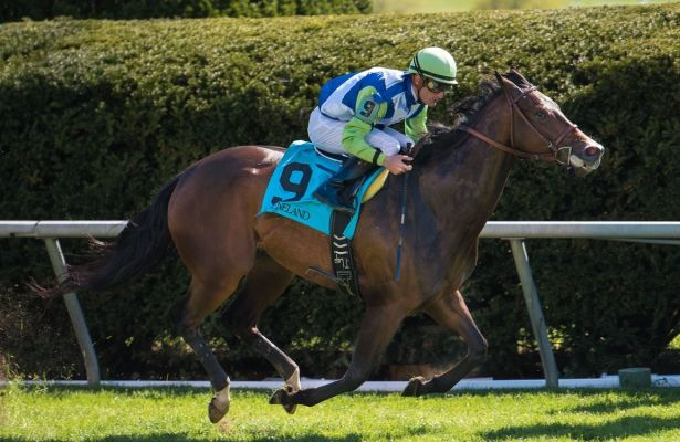 Exaggerated uncatchable in Giant's Causeway