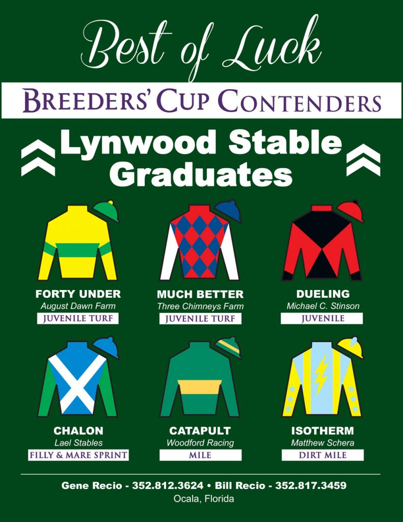 6 Lywood Graduates are in the Breeders Cup!