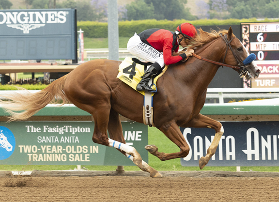 Lynwood Graduate King Jack Earns TDN Rising Star Honors at Santa Anita