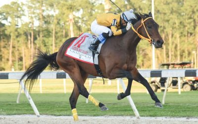 King Guillermo Wins Tampa Bay Derby